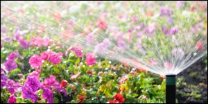 Full Service Irrigation - Sprinkler System